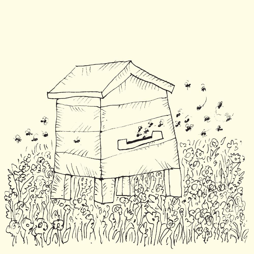 Rysunek ula na łące, do którego lecą pszczoły miodne